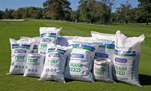 Tremendous 100 Rye Grass Seed Home Depot Yasminroohi Home Interior And Landscaping Dextoversignezvosmurscom