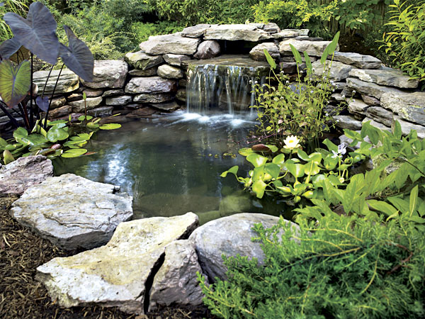 Masonry depot new york pond supplies for Natural fish pond