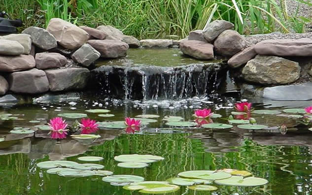 Masonry depot new york pond supplies for Outdoor fish pond supplies